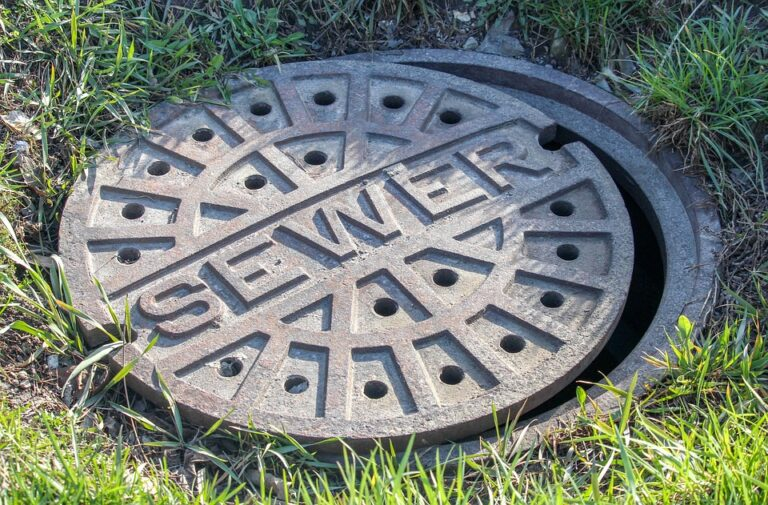 Sewer manhole cover in grass